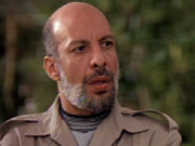 Avari's roles have ranged far and wide, including a Libyan representative in seaQuest DSV.